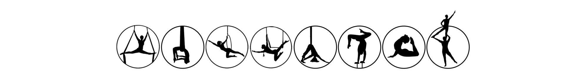 Aerial Fit Skills